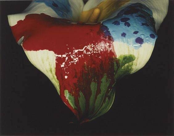 Experimentación y fotografía: Artes de Martes Proyecto#28