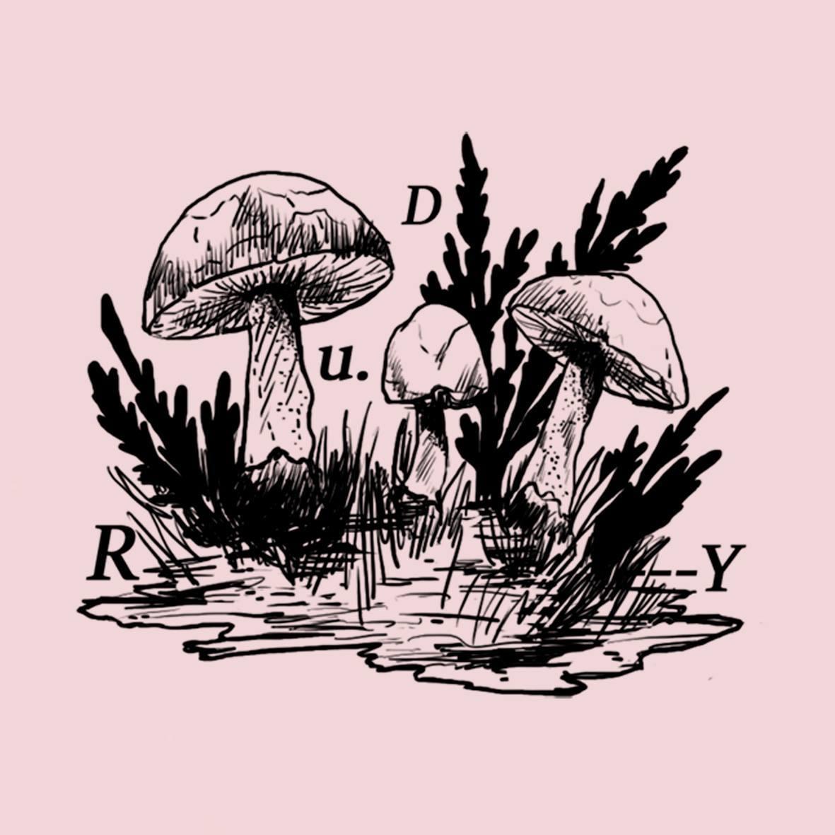Composiciones lúdicas: RUDY presenta «El Reino»