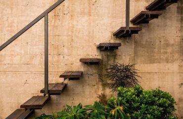 Encuentro de arte en el jardín de SACHA MISTOL