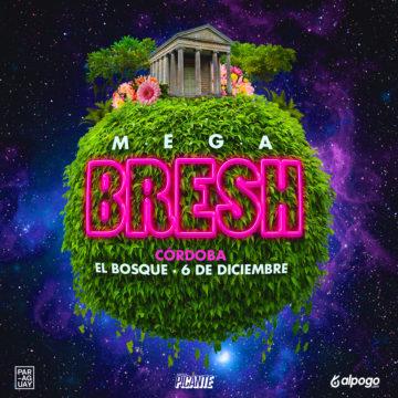 MEGA BRESH en El Bosque, la fiesta más grade de la historia